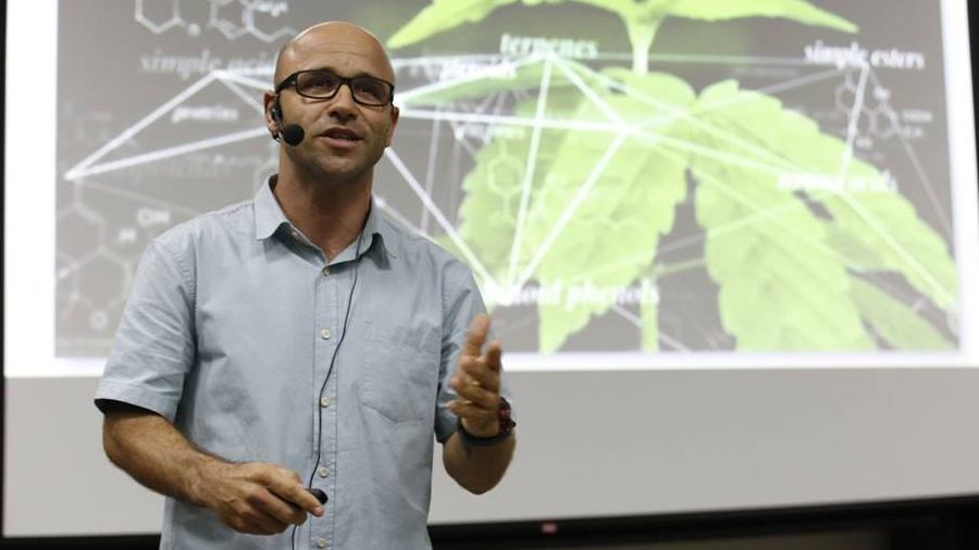 medicos elogiam primeiro curso sobre cannabis Médicos elogiam primeiro curso sobre cannabis medicinal do Instituto do Cérebro da UFRN