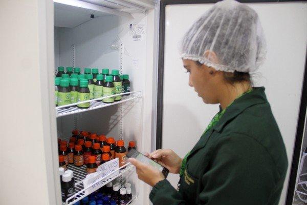 oleo cannabis abrace joao pessoa pb Única associação que pode cultivar maconha no país atende mais de 750 pacientes