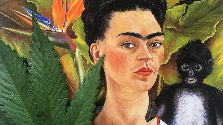 folha frida kahlo CBD é mais popular que Jesus, Kanye West, NBA, Taylor Swift e Beatles, mostram dados