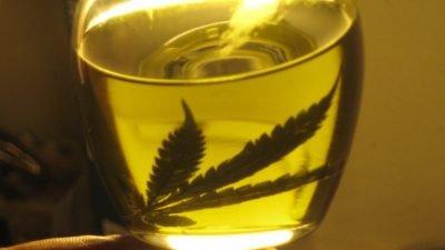 oleo folha pwen smith 400x225 Depois de passar meses na cama, mulher supera dores com cannabis medicinal