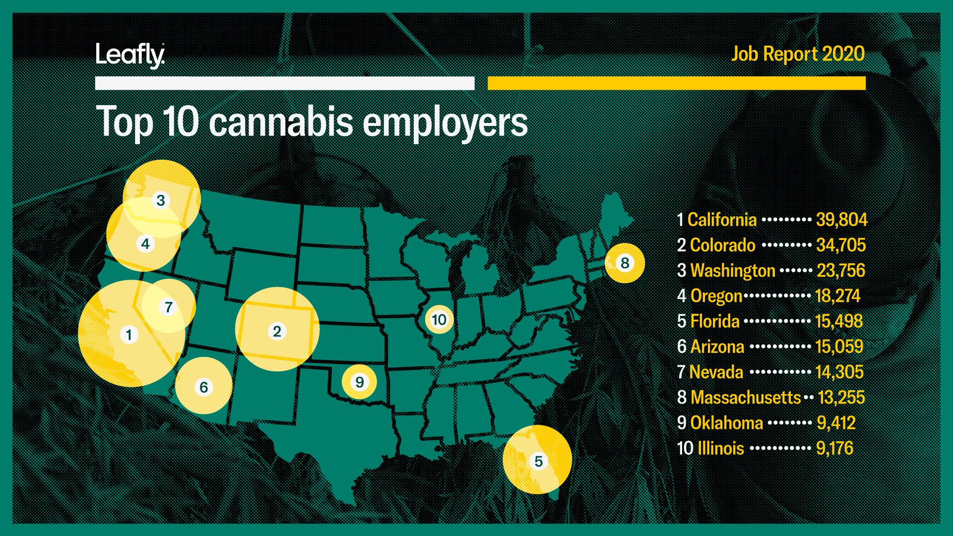 Top10CannabisEmployers web 1921 full report 02 Cannabis legal gera mais de 243 mil empregos nos EUA, aponta relatório