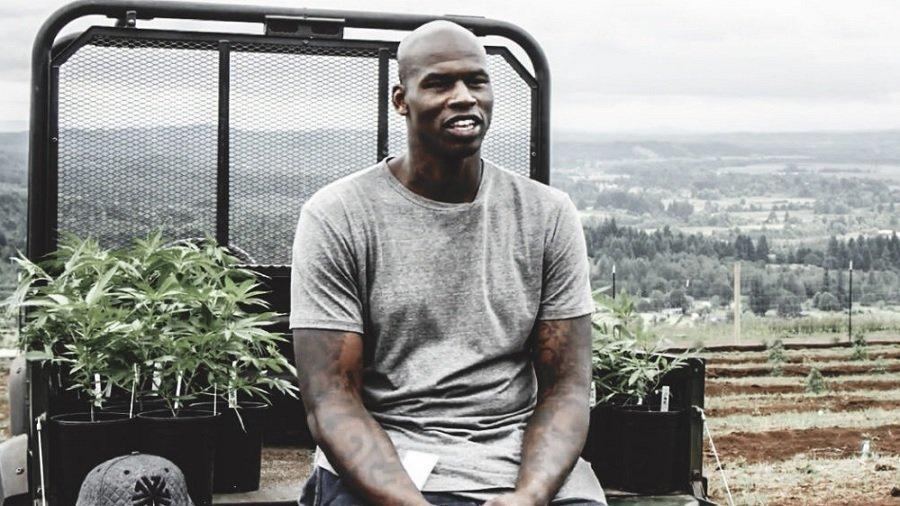 al harrington1 Ex NBA Al Harrington quer tornar 100 negros milionários através do negócio de cannabis